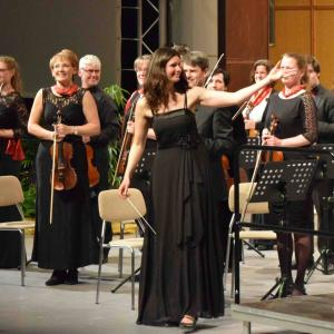 (c) Sinfonisches Orchester Hoyerswerda