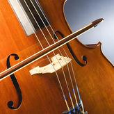 Violoncello (Detail)