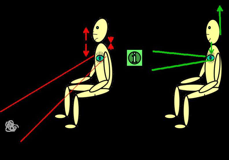Dr. Wolff - Sitting posture