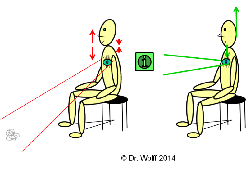 Dr. Wolff - Sitting posture