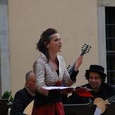 Tag der offenen Gärten in Fulda mit dem United Continuo Ensemble; Foto: Miriam Rommel