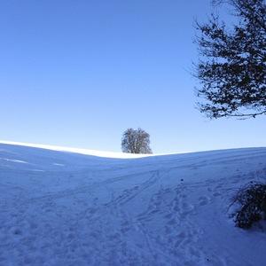 winterliche Umgebung von Eggenfelden; Foto: CMRembeck