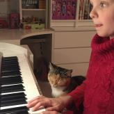 Sogar die Kätzchen hat den Klavierunterricht