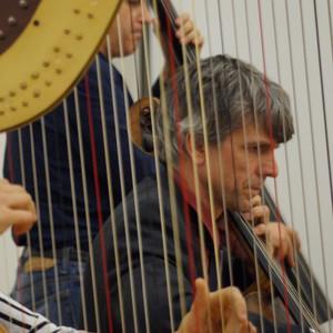 durch die Harfe